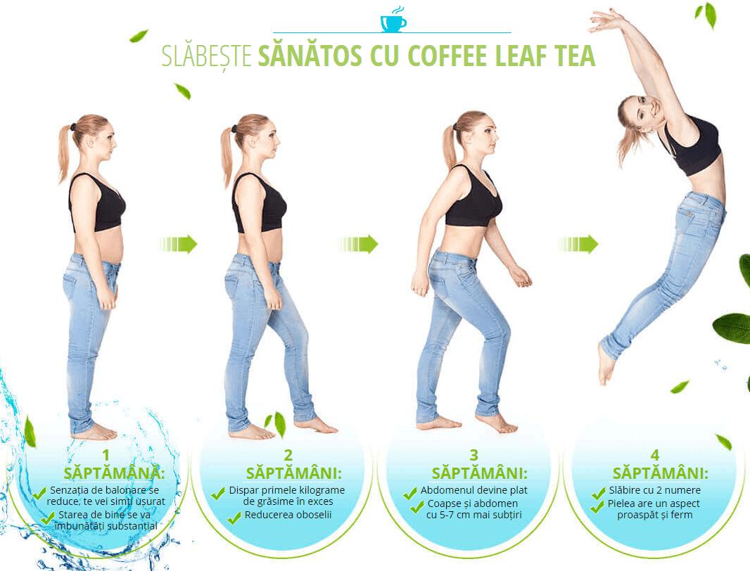 coffee leaf tea contraindicatii